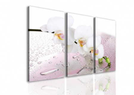 Tablou modular, Crenguța de orhidee albă.