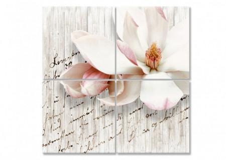Multicanvas, Floarea fină.