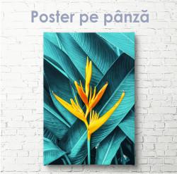 Poster, Floare galbenă exotică