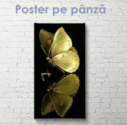 Poster, Fluture auriu pe fundal negru