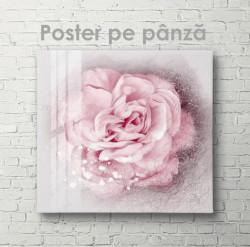 Poster, Frumusețe gingașă