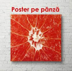 Poster, Grapefruit roșu