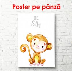 Poster, Maimuță pe un fundal alb