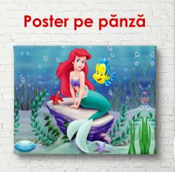 Poster, Sirena mică pe piatră