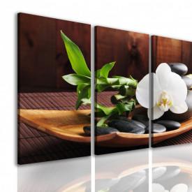 Tablou modular, Orhidee pe o farfurie.
