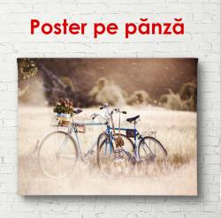 Poster, Bicicleta într-un parc