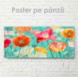 Poster, Flori multicolore