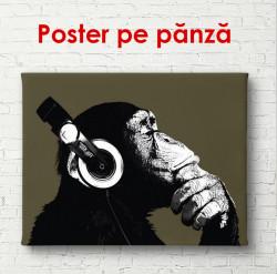 Poster, Maimuța cu căști pe un fundal negru