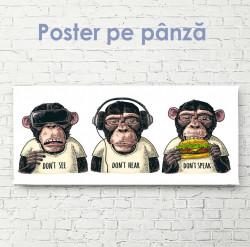 Poster, Trei maimuțe
