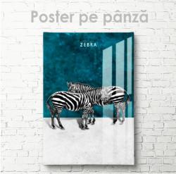 Poster, Zebre pe un fundal turcoaz