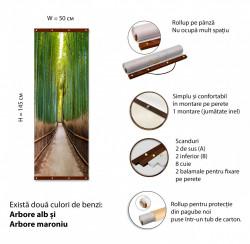 Roll-up, Pădurea de bambus