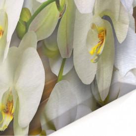 Tablou modular, Orhidee albă pe un fundal maro.