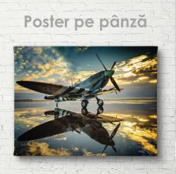 Poster, Avion pe fond de apus de soare