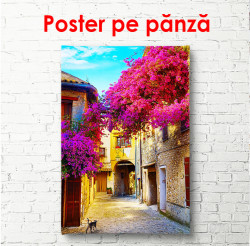 Poster, Copaci roz pe fundalul unei curți vechi