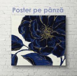 Poster, Floare albastră cu margini aurii