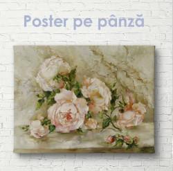 Poster, Gingășia culorilor