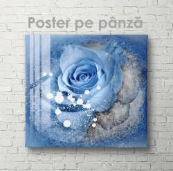Poster, Lagună albastră