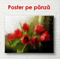 Poster, Lalele rosii