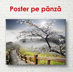 Poster, Peisaj de primăvară