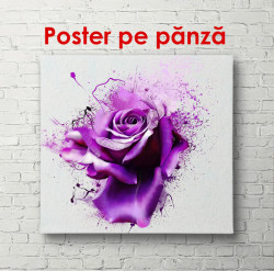 Poster, Trandafiri violeți delicați
