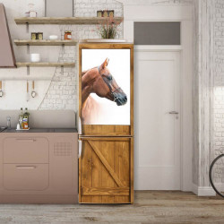 Stickere 3D pentru uși, Calul minunat , 1 foaie de 80 x 200 cm