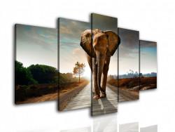 Multicanvas, Elefantul se primblă pe drum
