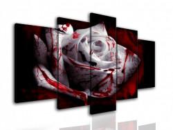 Multicanvas, Trandafirul alb, cu pete rosii