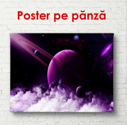 Poster, Cosmos violet