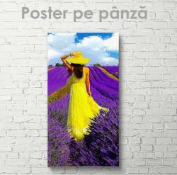 Poster, Fată în câmpul de lavandă