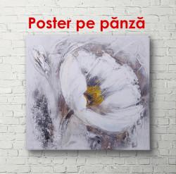 Poster, Floare albă pe perete