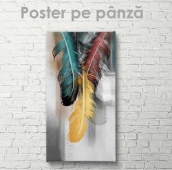 Poster, Pene