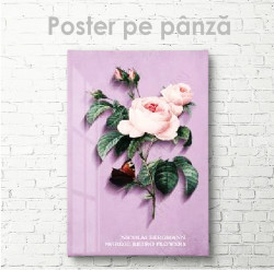 Poster, Trandafir de culoare nude