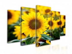 Tablou modular, Flori de floarea-soarelui
