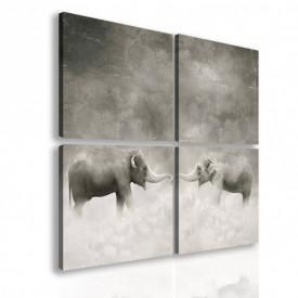 Multicanvas, Elefanți alb-negru.