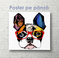 Poster, Buldog francez la modă care poartă ochelari