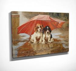 Poster, Câini drăguți