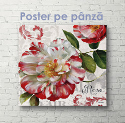 Poster, Floare în stil roșie și albă