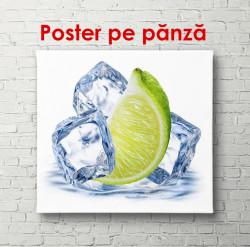 Poster, Lime verde și cuburi de gheață pe un fundal alb