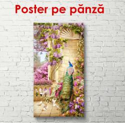 Poster, Pasărea din curte