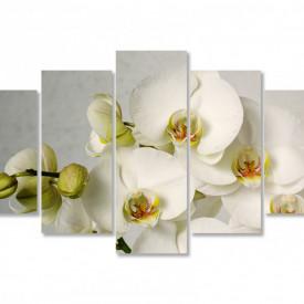 Tablou modular, Orhidee albă pe fundal gri.