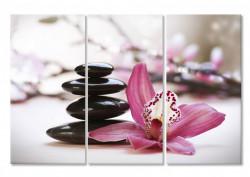 Tablou modular, Orhidee roz și pietre negre.