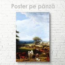 Постер, Cai în pășune
