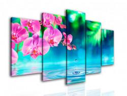 Multicanvas, Orhidee roz în reflectarea apei