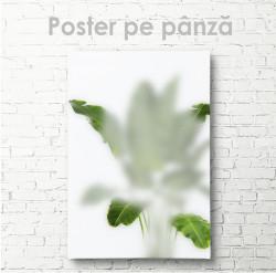 Poster, Frunze verzi în ceață