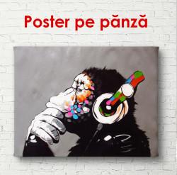 Poster, Maimuța cu casti pe fundalul negru
