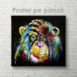 Poster, O maimuță