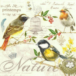 Poster, Păsări galbene pe ramuri