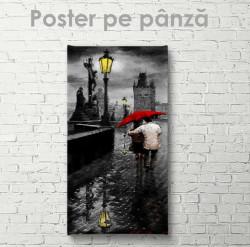 Poster, Plimbarea prin ploaie