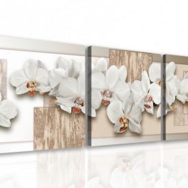 Tablou modular, Orhidee albe pe un fundal bej