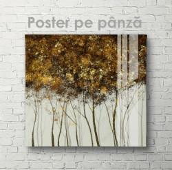 Poster, Copaci subțiri